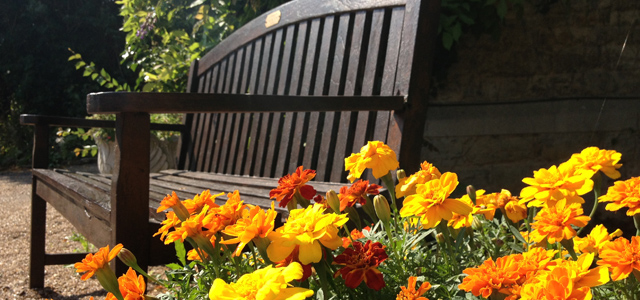 The Old Vicarage Care Home Bench & Flowers